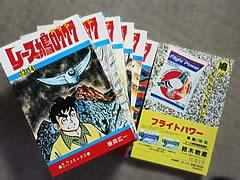 復刊レース鳩0777(アラシ)