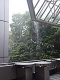 東京ドーム3塁側ゲート付近の雨