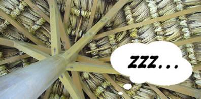 鮫が崎展望台の屋根の下にて