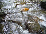 水流がなでる岩
