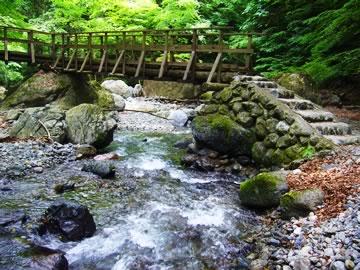 安谷川の木橋